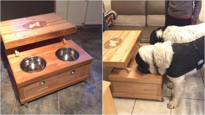Come trasformare vecchi mobili in un tavolo porta ciotole - Porta basculante per cani fai da te ...