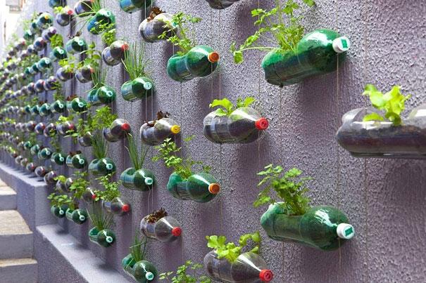 Pareti Con Bottiglie Di Vetro : Quello che si può realizzare con le bottiglie di plastica