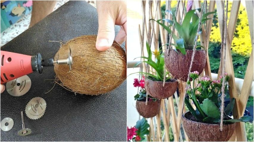 Come trasformare una noce di cocco in un originale vaso - Oggetti in legno per la casa ...