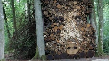 Case Di Tronchi Canadesi : Casa di tronchi canadese resinosi