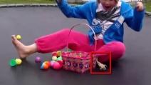 Una rana dall'uovo, ecco la reazione della piccola