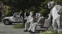 Scudetto Juve: Pogba, Llorente e Bonucci si vestono da zebre