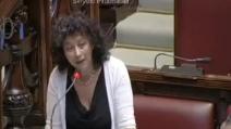 """Brusio alla Camera, la Pellegrini (SEL) sbotta: """"Basta,cazzarola!"""""""