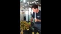 Ecco come tagliare 100 limoni in 60 secondi