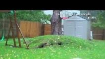 La potenza di Sandy sradica un albero in pochi secondi