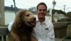 Sembra un leone, ma in realtà è un Labrador
