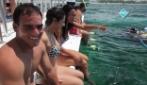 BAVARO SPLASH by Ocean Adventures PUNTA CANA
