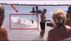Uno squalo nuota a riva: paura in Australia