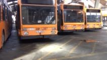 Ecco il disastro Anm: bus senza gasolio e assicurazioni in scadenza