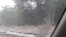 Nubifragio alle Mauritius: 10 vittime e ingenti danni