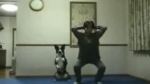 Il cane che fa ginnastica