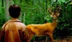 The Walking Dead, la scena del cervo