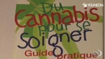 Sì alla cannabis terapeutica in Francia