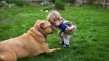 Abbiamo tanto da imparare dai cani! Ecco un video che vi farà piangere