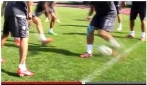 Ibrahimovic vs Moscardelli: sfida tra bomber di razza