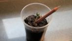 Sprout, la matita che diventa pianta