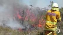 Brucia l'Australia, rischio che maxi incendio arrivi a Sydney