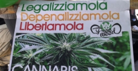 """Cannabis, corteo pro legalizzazione: """"Giovanardi fatti una canna con noi"""""""
