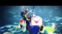 Tokyo: Auguri per San Valentino da parte del... calamaro