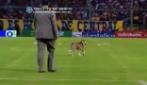 Durante Rosario-River Plate un cane invade il campo e fa sospendere il match