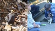 Amatrice, 32 giorni sotto le macerie: il gatto Rocco riabbraccia i suoi padroni
