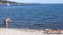 Una donna filma una strana creatura a riva: quando salta fuori dall'acqua ecco cosa succede