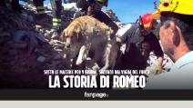 """Amatrice, la storia di Romeo: """"Cosi lo abbiamo salvato dopo 9 giorni sotto le macerie"""""""