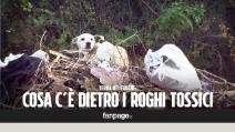 Terra dei fuochi: i rifiuti delle Asl di Abruzzo e Sicilia finiscono nei roghi tossici