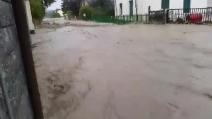 Alessandria, la strada si trasforma in un fiume in piena