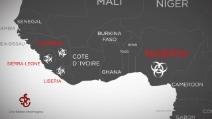 Ebola: tutto quello che c'è da sapere