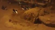 Alluvione Genova, l'attimo in cui esondano i torrenti