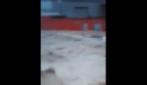 Acqua ai piani bassi degli edifici, ecco l'alluvione che ha colpito Massa Carrara