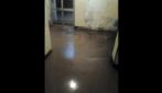 Genova, donna documenta l'allagamento della sua abitazione