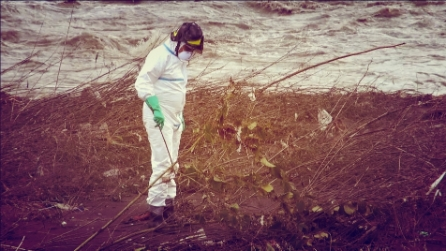 Genova, maltempo: crolla cimitero, resti umani nel fiume