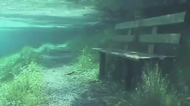 Austria, meravigliose immagini del Gruener See: quando il parco diventa un lago
