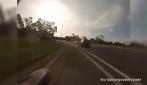 Australia, un canguro taglia improvvisamente la strada alla ciclista