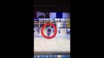 Pallavolo, tifoso entra in campo e aggredisce la giocatrice: 5 anni di Daspo