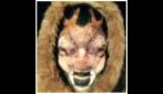 Artista del make-up si dipinge il volto di una renna e di una foca
