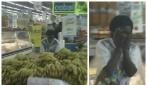 """Terrore al supermercato: tra le banane si nasconde una sorpresa """"tremenda"""""""