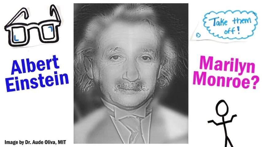 Vedi Marylin oppure Einstein? Scopri con questo test se godi di una buona vista