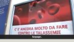 """A rischio il Centro studi microcitemie: """"Avremo nuovi e numerosi casi di anemia mediterranea"""""""