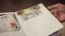 Too young to die, il diario di Heath Ledger