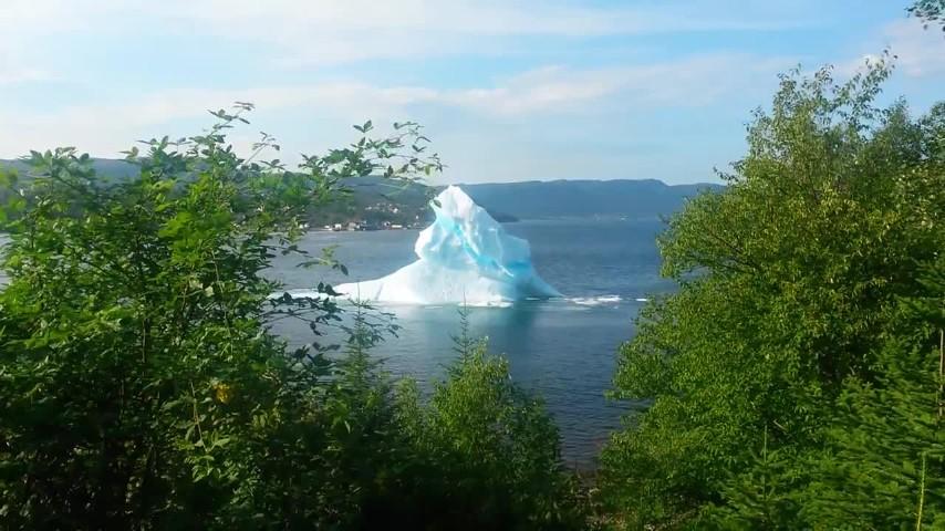 Un iceberg davanti casa e mentre lo riprendono ecco cosa accade