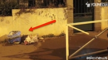 Attentati Parigi, trovata nella spazzatura una cintura esplosiva: sarebbe quella di Salah
