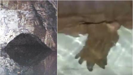 Il pescatore entra nella grotta sul fiume e fa un incontro terrificante