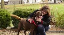I suoi padroni avevano perso le speranze: dopo 5 anni ecco come ritrovano il loro cane