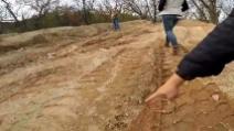 Trovano una strana impronta in una discarica: dopo un po' la scoperta emozionante