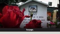 Casa Rosa, il primo cimitero per gli amici a quattro zampe