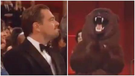 Oscar 2016, l'orso di Revenant in sala insieme a Leonardo DiCaprio