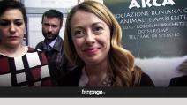 https   youmedia.fanpage.it video ak Vv4VX-SwefggJ0wA https ... 91d7c29343b